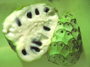 Cherimoya seeds pictures