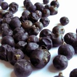 Juniper Berry Pictures