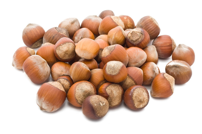Filbert Nuts Picture