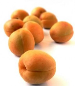 Photos of Apricot Kernel