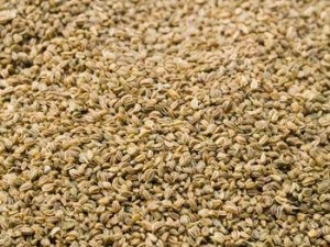 Images of Celery Seed