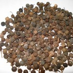 Images of Cubeb