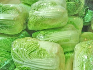 Napa Cabbage Picture