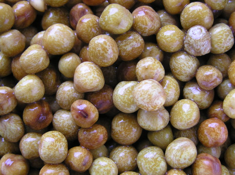 Photos of Pigeon Peas