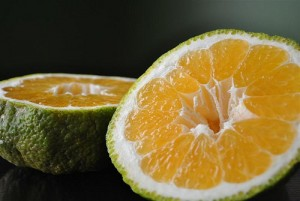 Ugli Fruit Picture