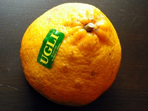 Images of Ugli Fruit