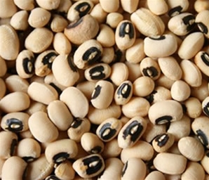 Images of Cowpea
