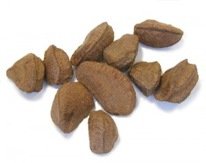 Photos of Brazil nut
