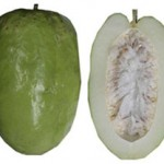 Photos of Giant Granadilla