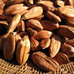 Images of Pili Nut