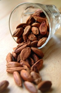 Pictures of Pili Nut