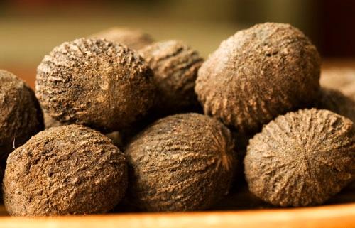 Photos of Black Walnut