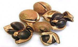 Images of Tea seed oil