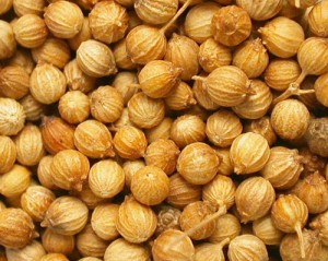 Photos of Coriander Seeds
