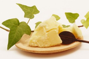 Picture of Kokum Butter