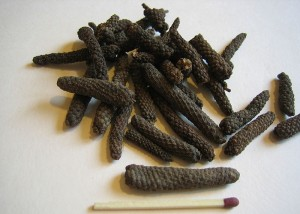 Piper Longum (Long pepper) Picture
