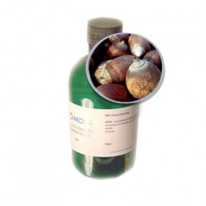 Babassu Oil Picture