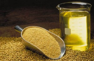 Soybean Oil Picture