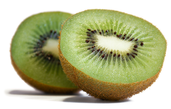 kiwi fruit  facts, pictures, health benefits and nutritional value, Beautiful flower