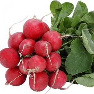 Pictures of Red Radish