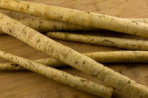Greater Burdock Root Image