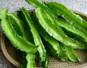 Winged Bean Picture