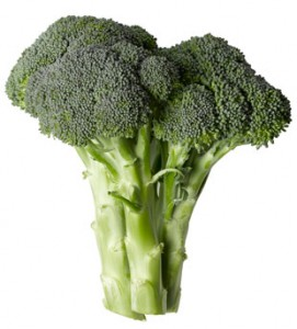 Photos of Broccoli