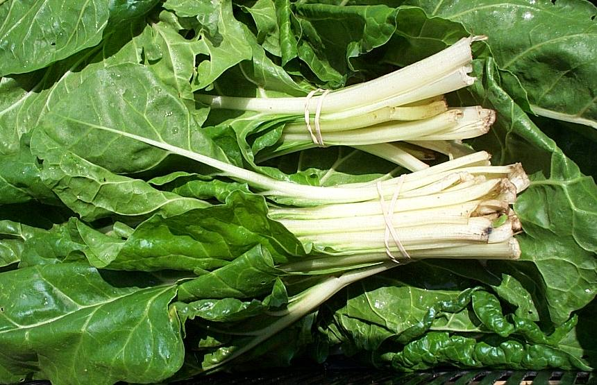 Pictures of Swiss Chard