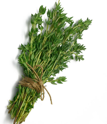 Thyme Nutrition Facts Health Benefits Oil Uses