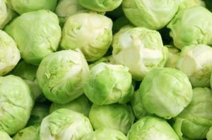 Pictures of Brussels Sprouts
