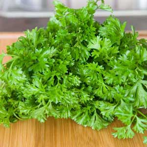 Photos of Parsley