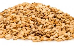 Photos of Sesame Seeds Photo