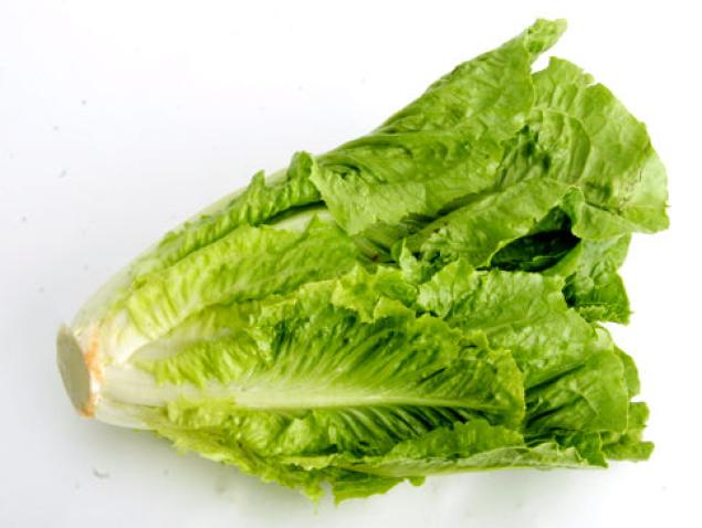 Photos of Romaine Lettuce