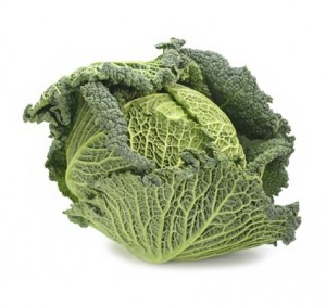 Savoy Cabbage Images