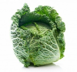 Savoy Cabbage Photos