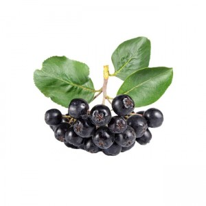 Chokeberry Fruit